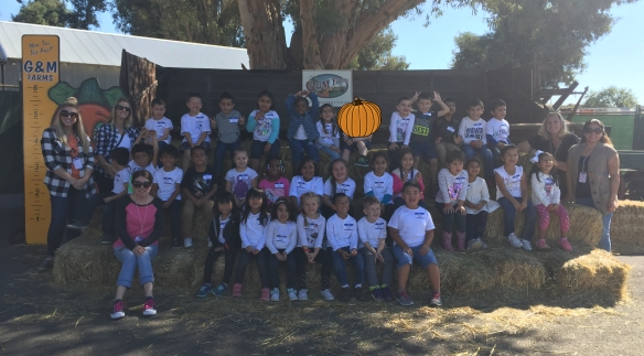 pumkin-patch-safe-to-share-2016